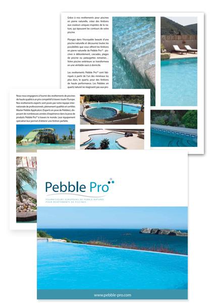 Pebble Pro Brochure