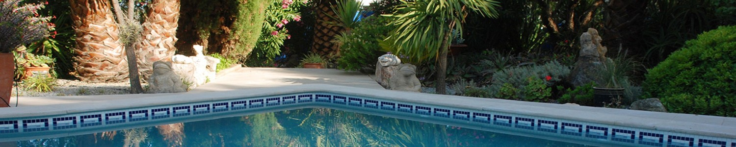 Speciality Swimming Pool Finishes